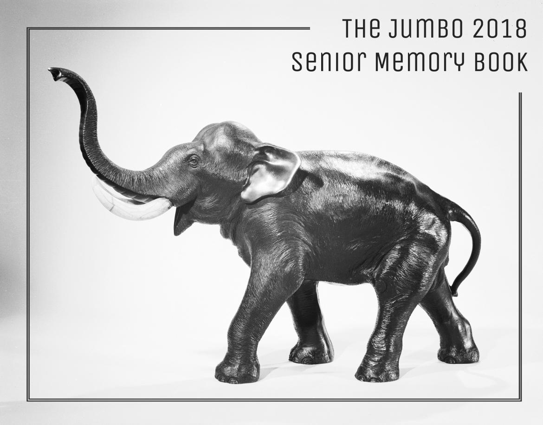 2018 Senior Memory Book!